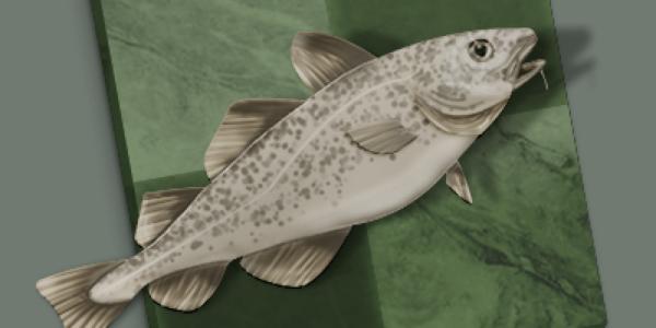 chessbase-pozwany-przez-tworcow-stockfisha