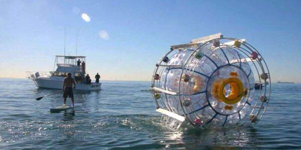 """w-wielkiej-bance-""""spaceruje""""-po-oceanie.-chce-dojsc-na-bermudy"""