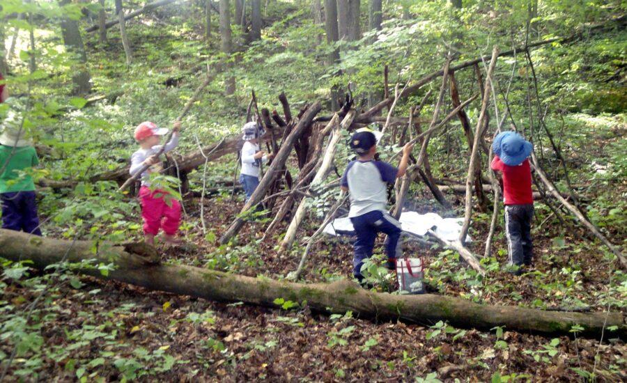 naukowcy-zalecaja,-aby-pozwalac-na-zabawy-w-lesie