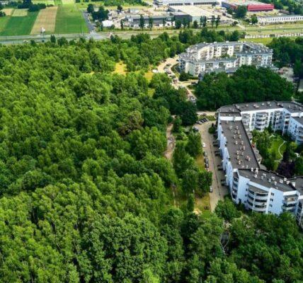 mieszkancy-lodzi-wywalczyli-60-ha-terenow-zielonych-zamiast-nowego-osiedla