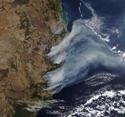 na-dymie-z-australijskich-pozarow-urosly-oceaniczne-glony,-ktore-pochlaniaja-tony-dwutlenku-wegla