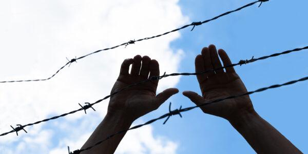 nielegalne-przekroczenia-granicy-polsko-bialoruskiej.-ponad-230-prob